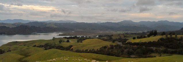 Coramandel NZ photo by Krey Price